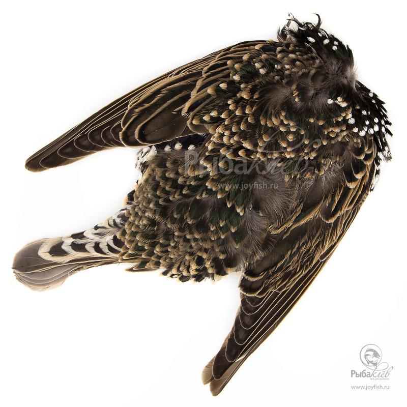Шкура Скворца Veniard Starling Complete Skin уловистые мушки на хариуса