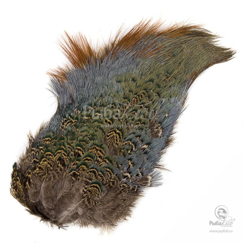 Спина Охотничьего Фазана Veniard Cock Pheasant Back Patch
