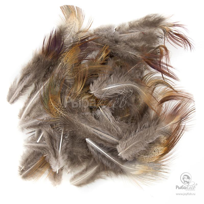 Перья Охотничьего Фазана Veniard Cock Pheasant Long Brown Rump