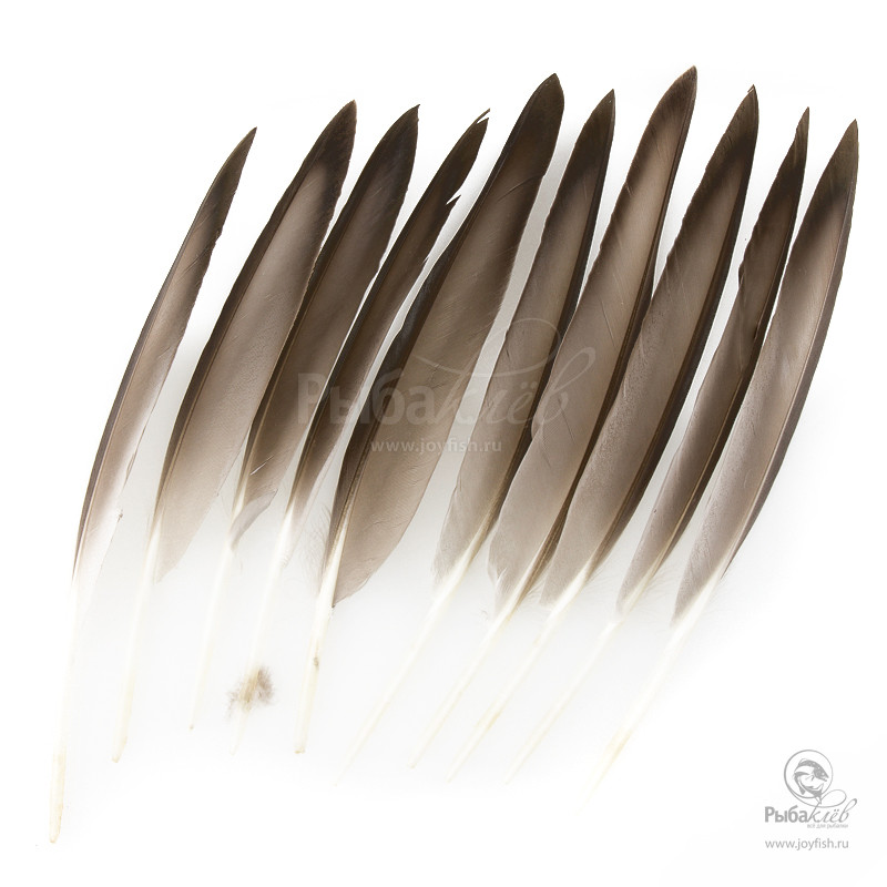 Перья Утки Veniard Mallard Duck Wing Quills крылья утки wapsi mallard duck wings