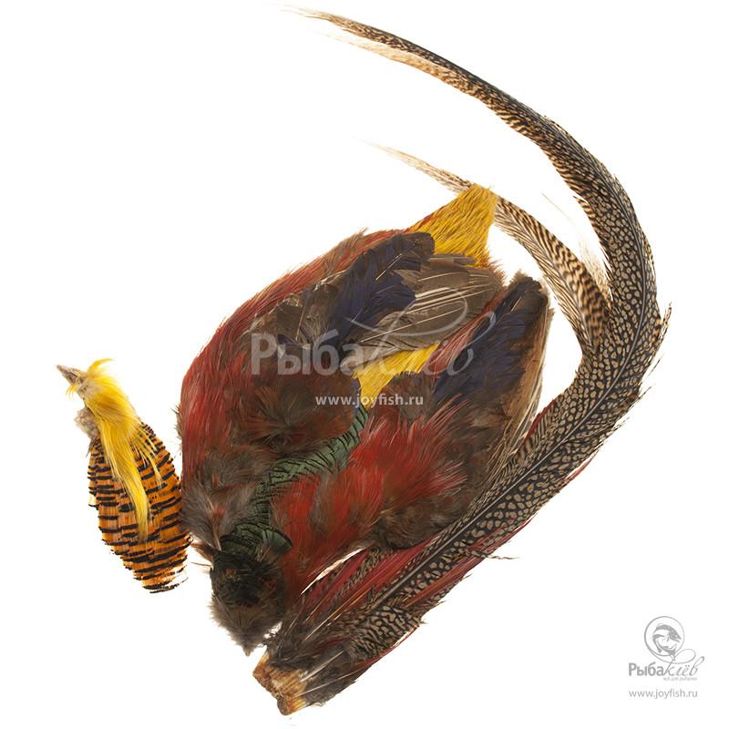Шкура Золотого Фазана Veniard Golden Pheasant Complete Skin