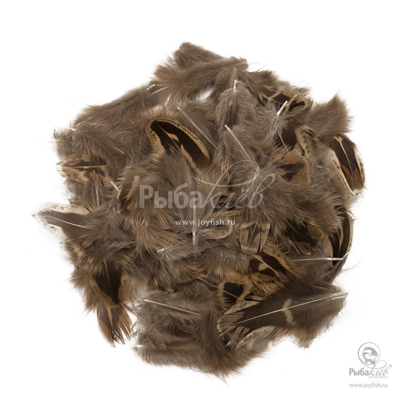 Перья Охотничьего Фазана Veniard Hen Pheasant Shoulder