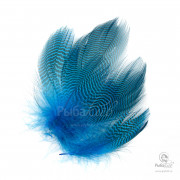 Перья Чирка Wapsi Teal Barred Flank