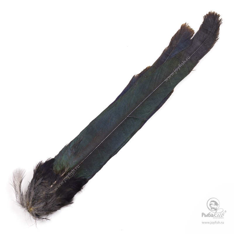 Крылья Сороки Veniard Magpie Whole Tail