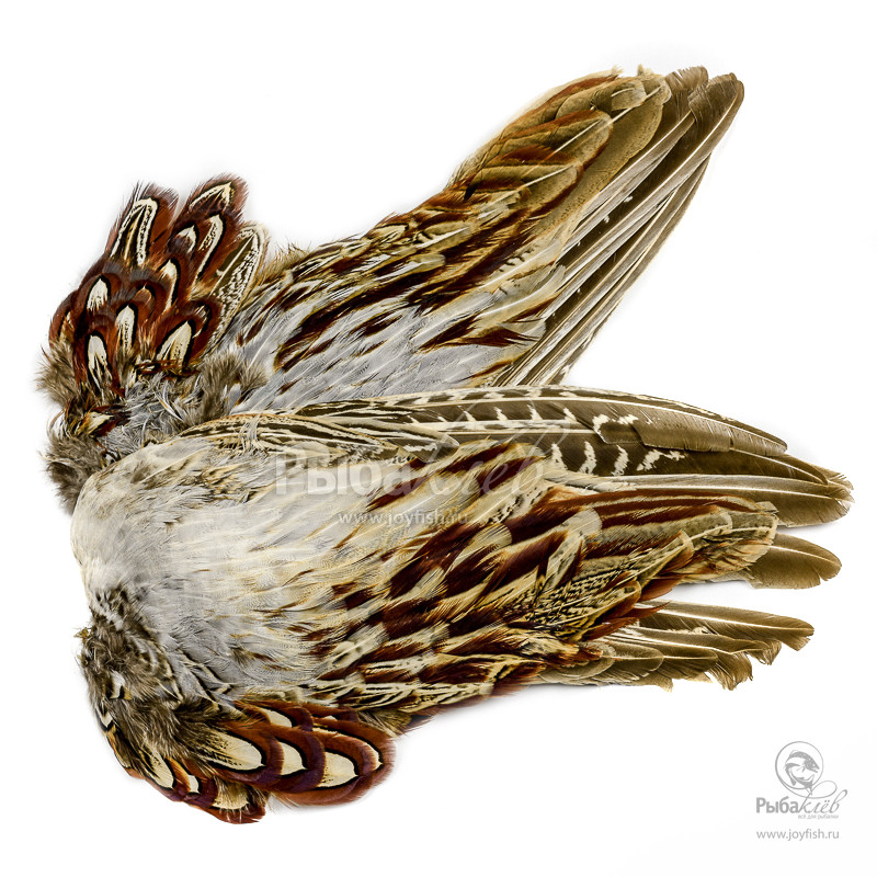 Крылья Охотничьего Фазана Veniard Cock Pheasant Wings
