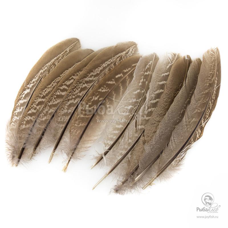Перья Охотничьего Фазана Veniard Cock Pheasant Wing Quills