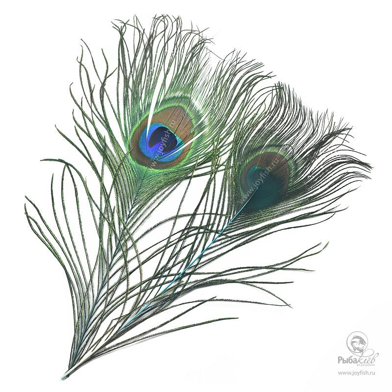 Перья Павлина Veniard Peacock Eye Tops