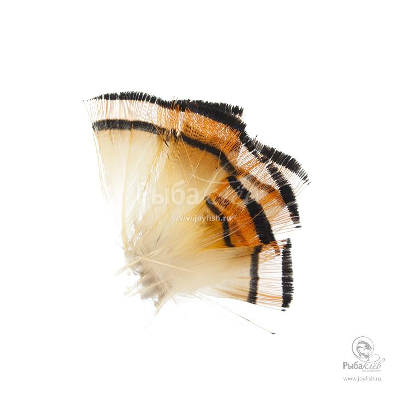 Перья Золотого Фазана Wapsi Golden Pheasant Tippets