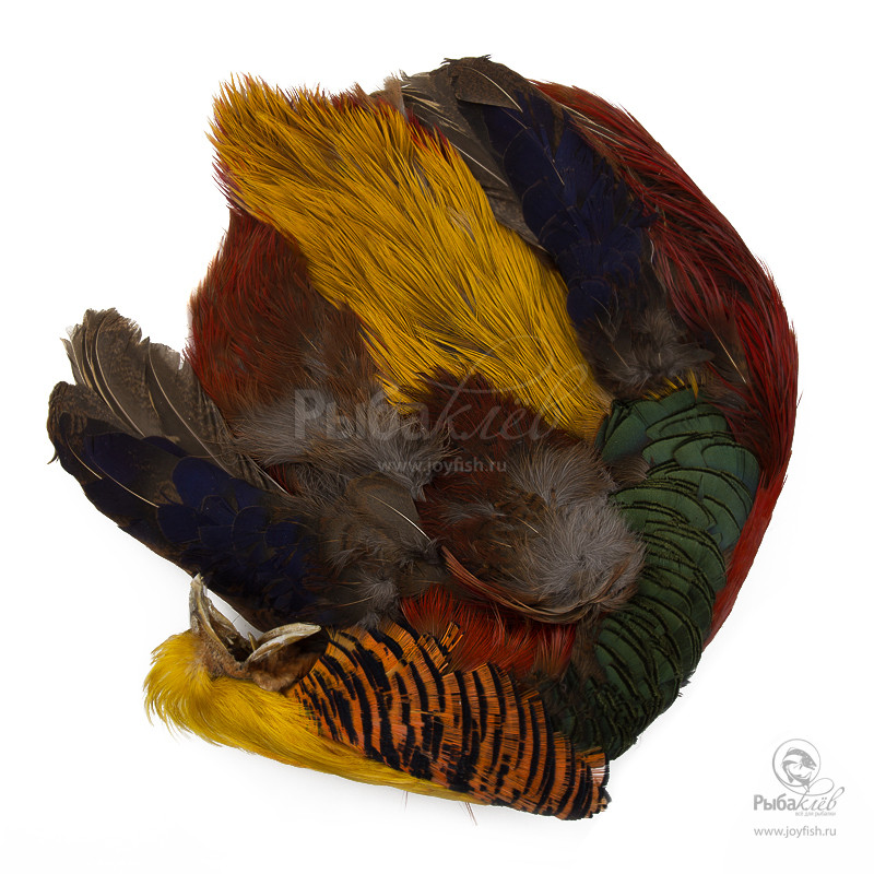 Шкура Золотого Фазана Wapsi Golden Pheasant Whole Skin