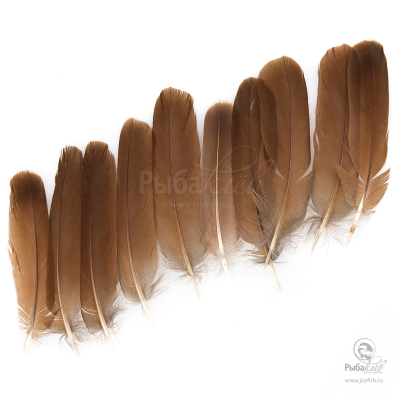 Перья Куропатки Veniard English Partridge Plain Cinnamon Brown Tails