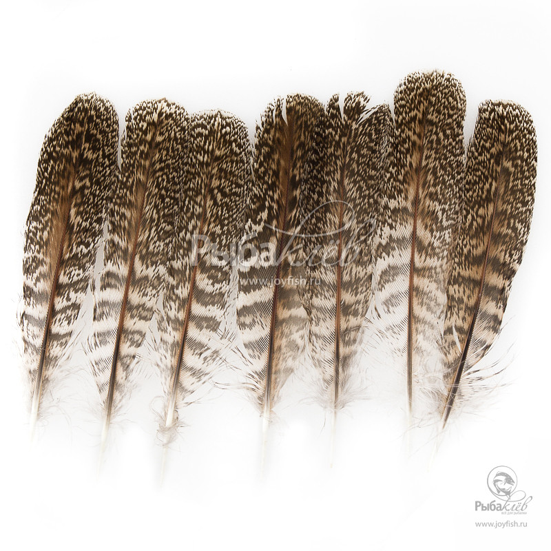 Перья Куропатки Veniard English Partridge Speckled Centre Tails