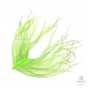 Перья Страуса Veniard Barred Long Ostrich