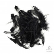 Перья Петуха Wapsi Neck Hackle Mini Pack