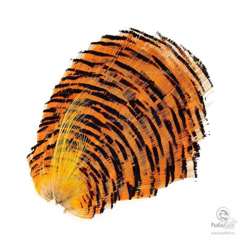 Перья Золотого Фазана Hareline Golden Pheasant Complete Natural Tippets